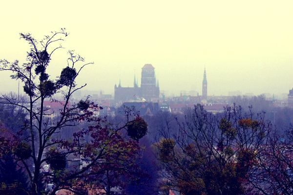 Вид на туманный Гданьск c Градовой горы